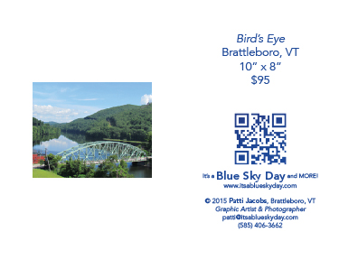 "Bird's Eye Brattleboro, VT 10"" x 8"" $95"